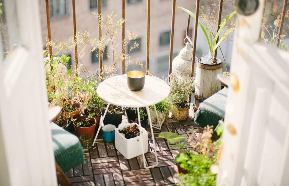Mini hodowla ziół na balkonie