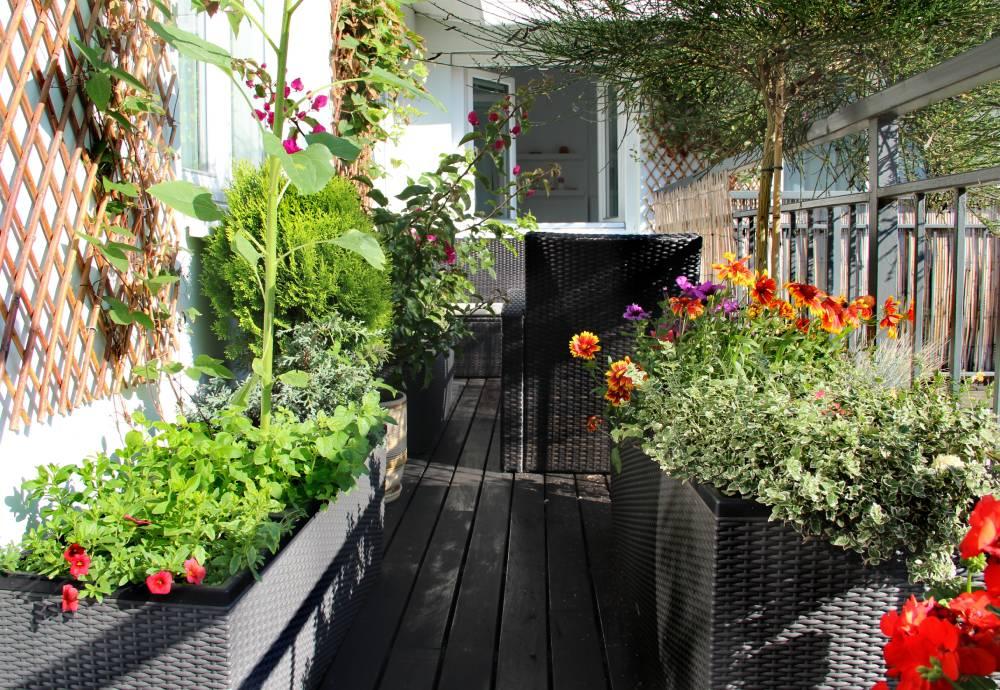 Ukwiecony balkon pełen kwiatów