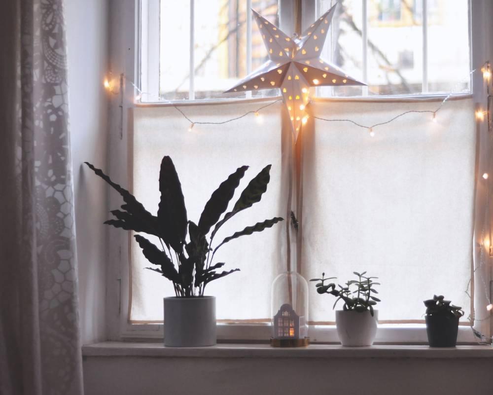 Zimowe oświetlenie okna