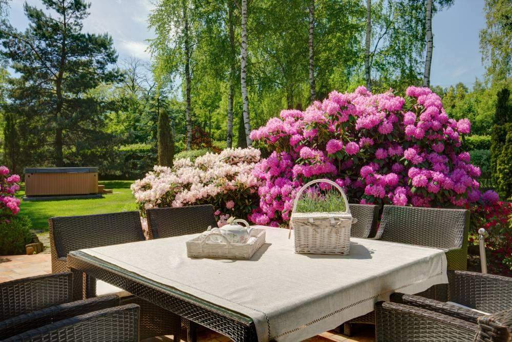 ogród w stylu romantycznym